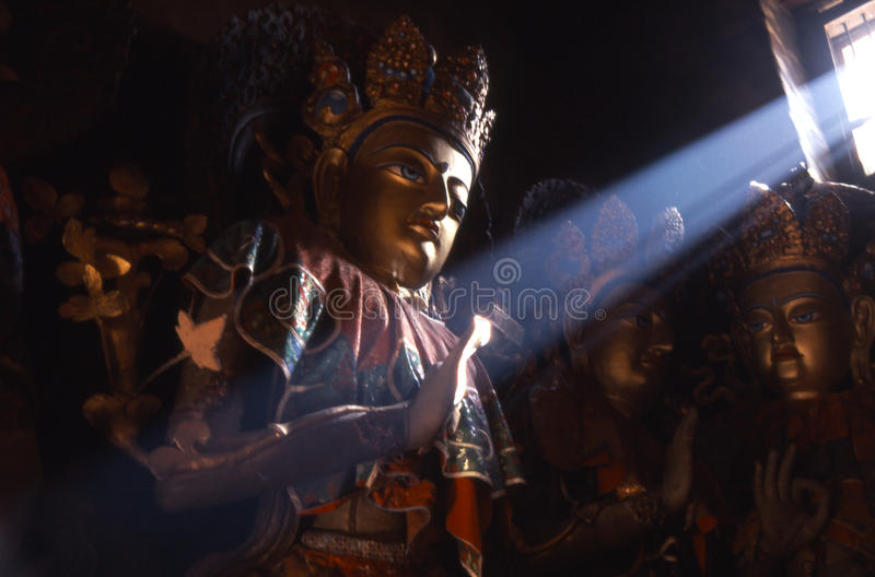 Estátuas de Buddha fotos de stock royalty free