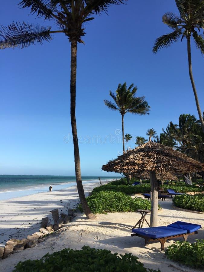 Estância de verão de Zanzibar imagem de stock