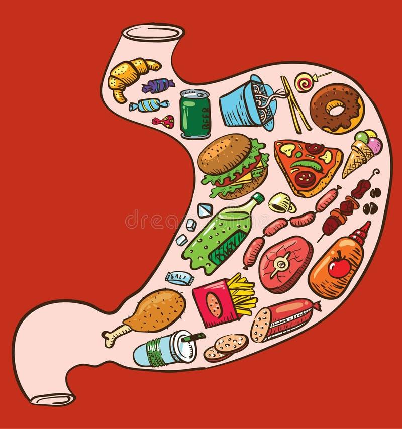 Estômago do fast food ilustração do vetor