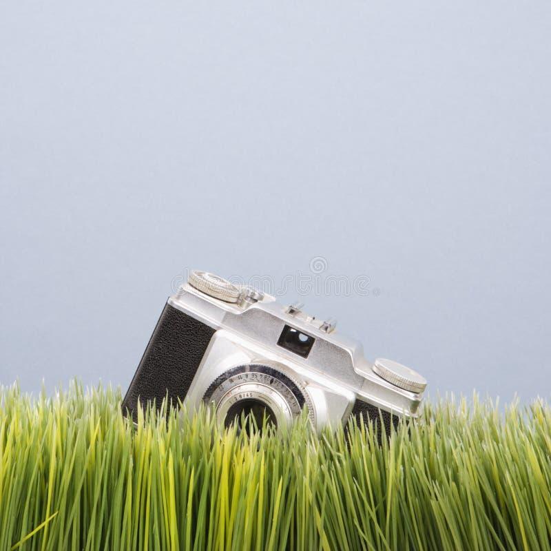 Estúdio disparado da câmera do vintage na grama. imagens de stock