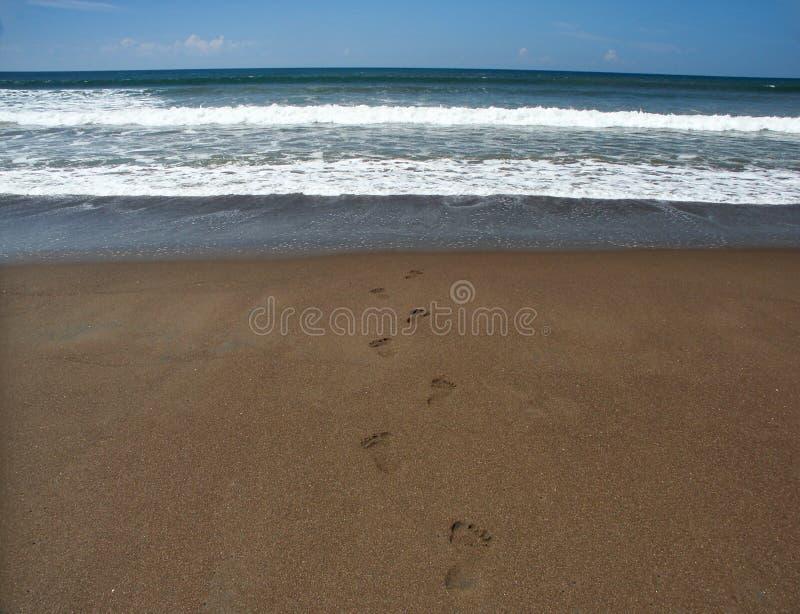 Est allé pour un bain à l'océan images stock