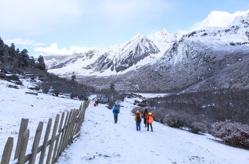 Estação de surpresa do inverno na reserva natural de Yading em Sichuan, China imagens de stock royalty free