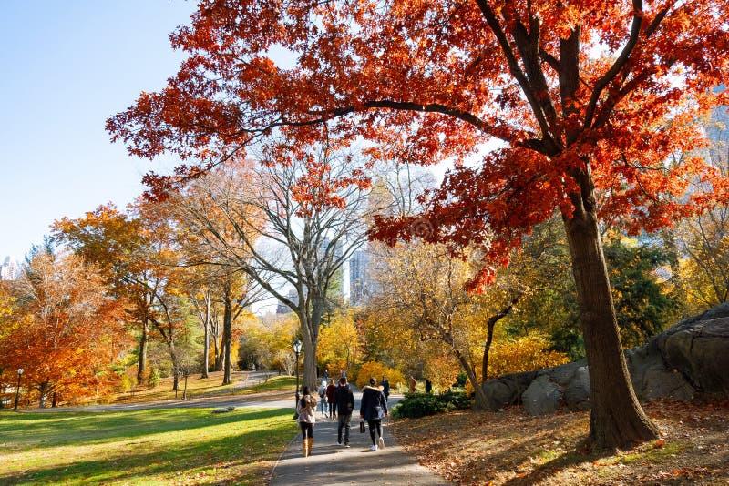 Estação no Central Park, New York City do outono fotografia de stock