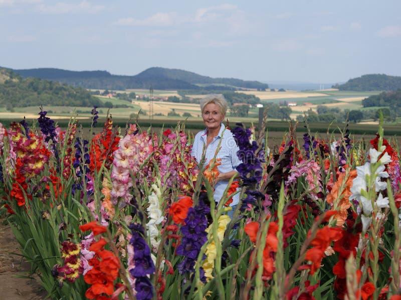 Esta mujer joven rubia admira el esplendor colorido de los gladiolos coloridos foto de archivo