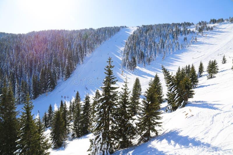 Estación de esquí Kopaonik fotos de archivo libres de regalías