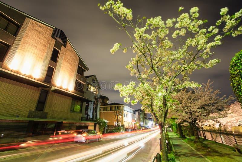 Estación de la flor de cerezo del ` s de Japón fotos de archivo