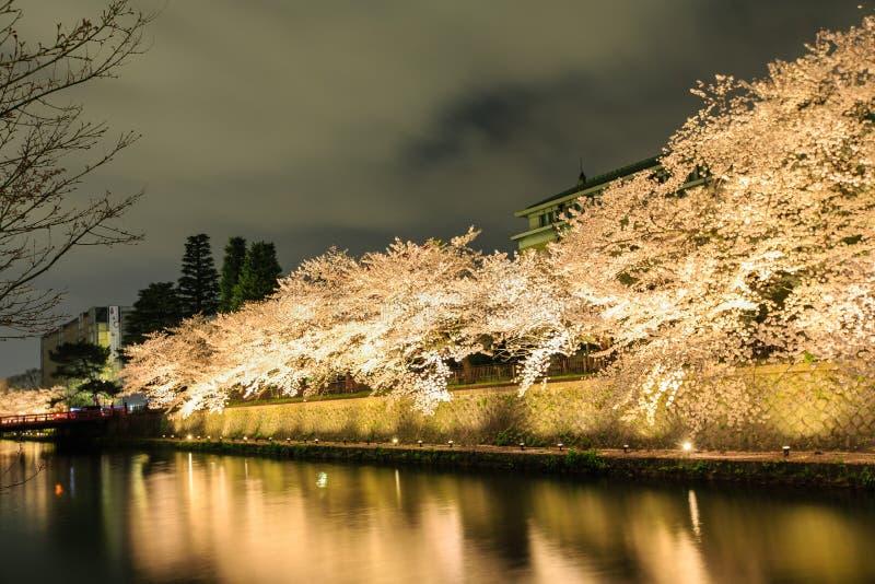 Estación de la flor de cerezo del ` s de Japón imágenes de archivo libres de regalías