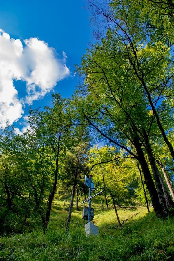 Estación de medición de la calidad del aire en bosque foto de archivo libre de regalías