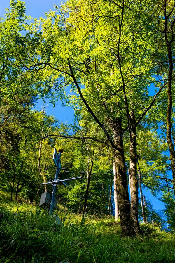 Estación de medición de la calidad del aire en bosque fotografía de archivo libre de regalías