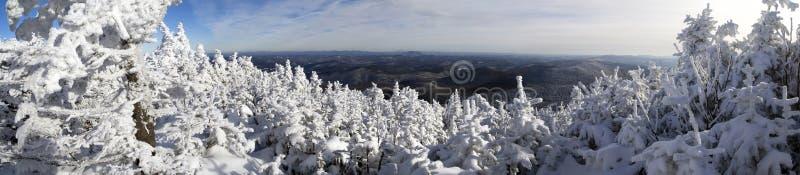 Estación del invierno fotos de archivo libres de regalías