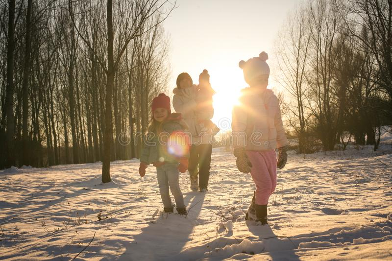 Estación del invierno El caminar y el jugar foto de archivo