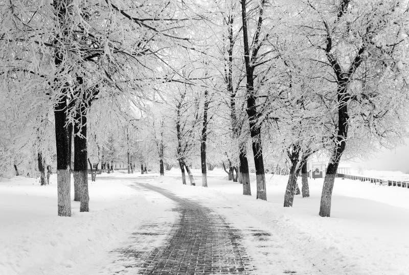 Estación del invierno en ciudad imagenes de archivo
