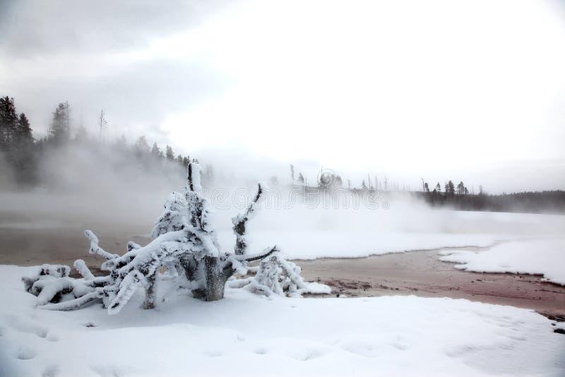 Estación del invierno en el lago de Yellowstone NP foto de archivo