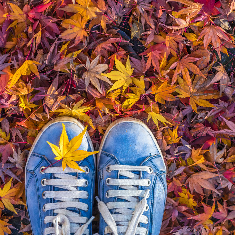 Estación del otoño en zapatos del estilo del inconformista fotografía de archivo