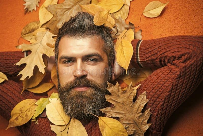 Estación y otoño imagen de archivo libre de regalías