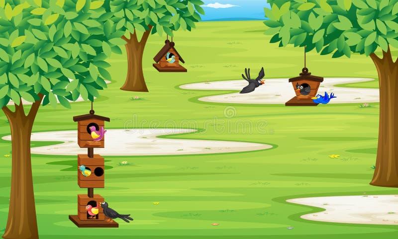 Estacione com os pássaros na casa do pássaro na árvore ilustração stock