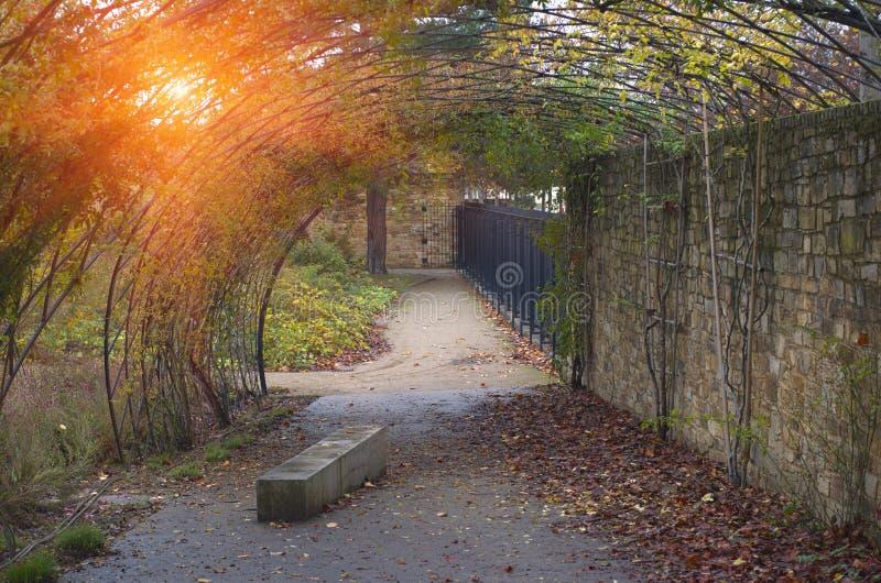 Estacione na cidade no outono com uma alcova e umas folhas caídas imagens de stock