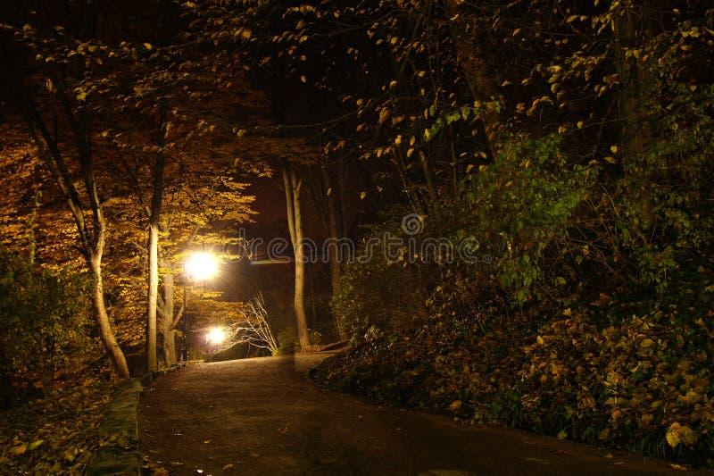 Download Estacione na noite foto de stock. Imagem de outdoors - 16860240