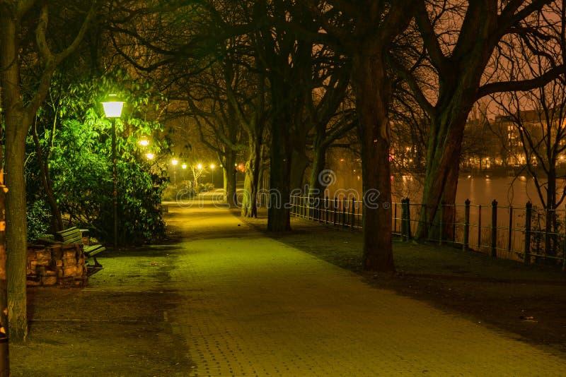 Estacione perto da série do rio em Berlim na noite, ilumine acima pela luz de rua imagem de stock royalty free