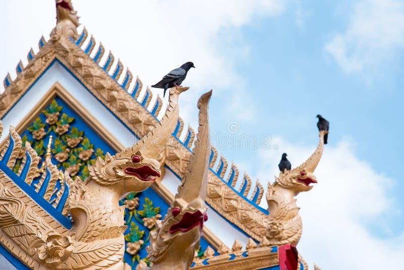 Estada do pombo na estrutura do naga no templo do henu de Wat Sanam em Nontha fotos de stock