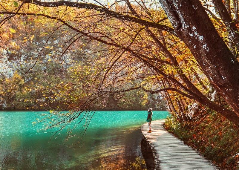 Estada na ponte de madeira sobre o lago da montanha, outono dourado do menino fotos de stock