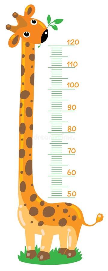Estadiómetro de la jirafa ilustración del vector