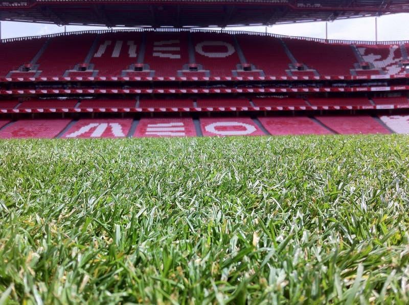 Estadio de Benfica fotografía de archivo libre de regalías