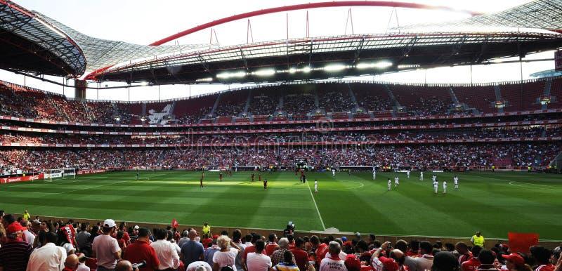 Panorama del estadio de Benfica imágenes de archivo libres de regalías