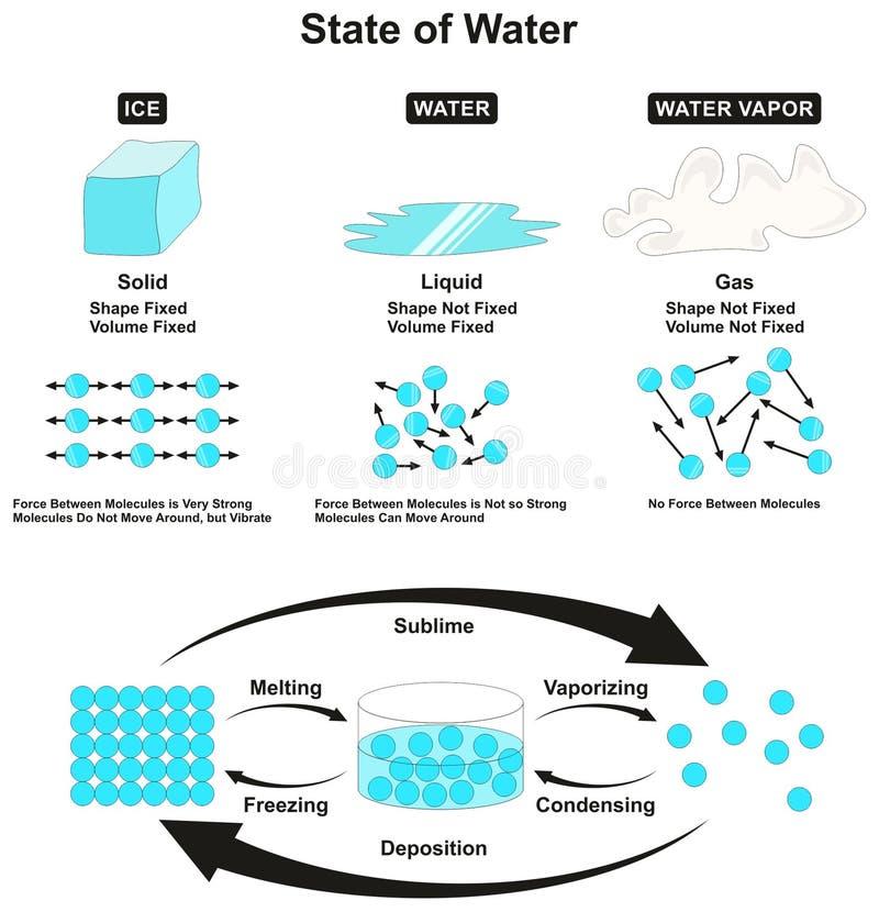 Estado de água infographic ilustração do vetor