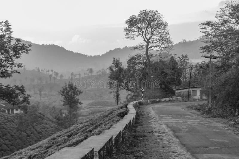 Estado del borde de la carretera fotos de archivo libres de regalías