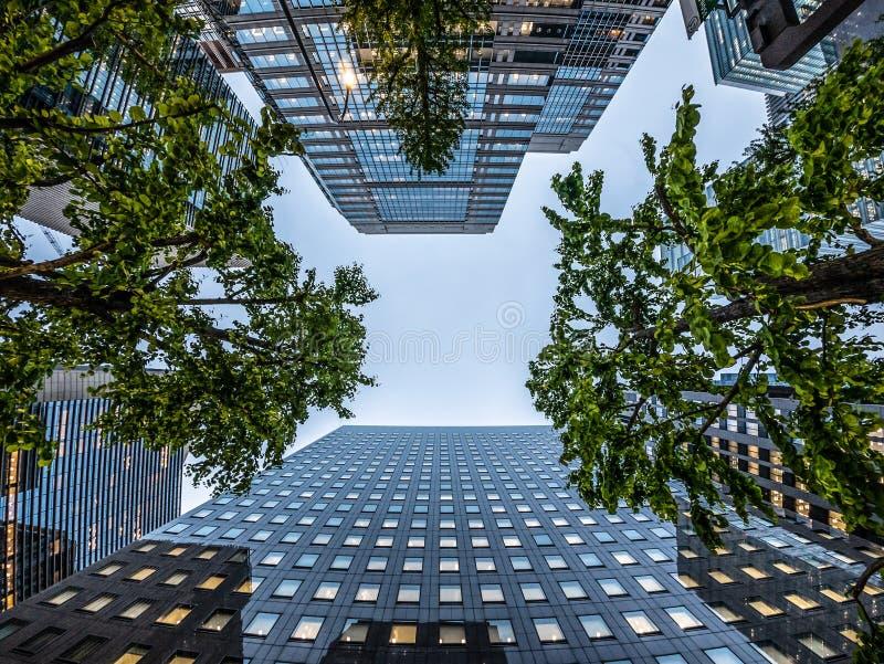 Estado del concepto del negocio de Asia de verdad y construcción corporativa mirada para arriba de vista del horizonte moderno de fotografía de archivo