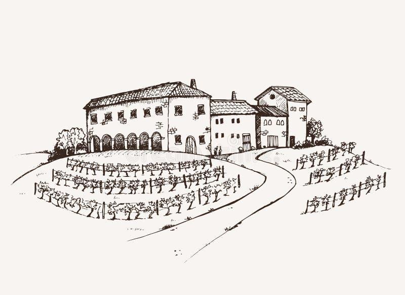 Estado del viñedo ilustración del vector