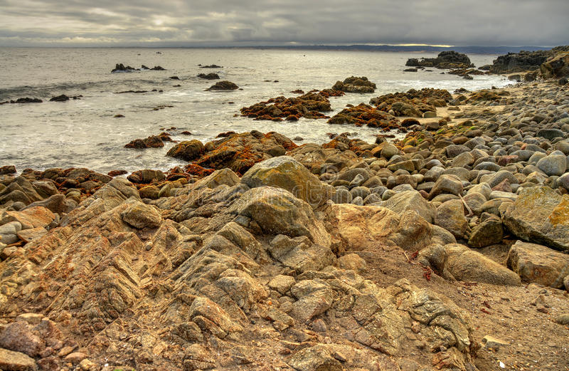 Estado Marine Reserve de Asilomar da baía de Monterey imagens de stock
