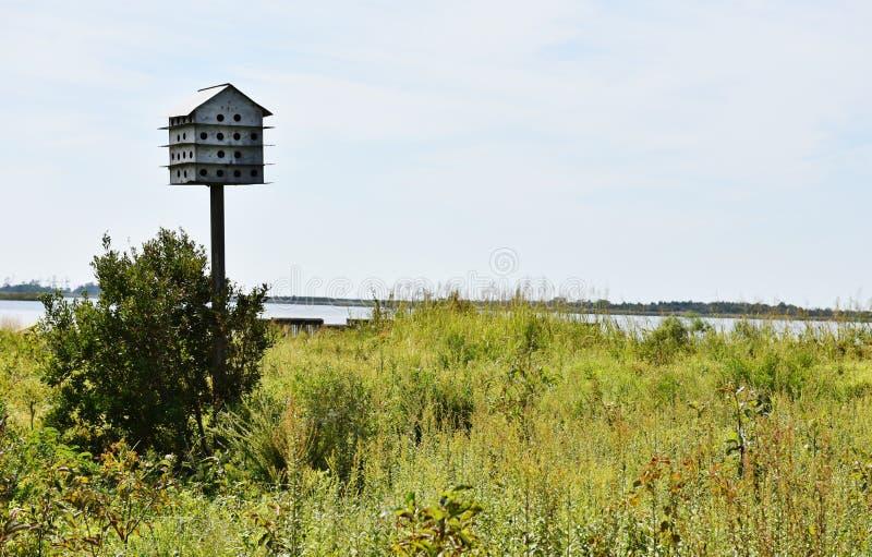 Estado traseiro EUA de Virgínia das caixa-ninhas da reserva natural da baía fotos de stock royalty free