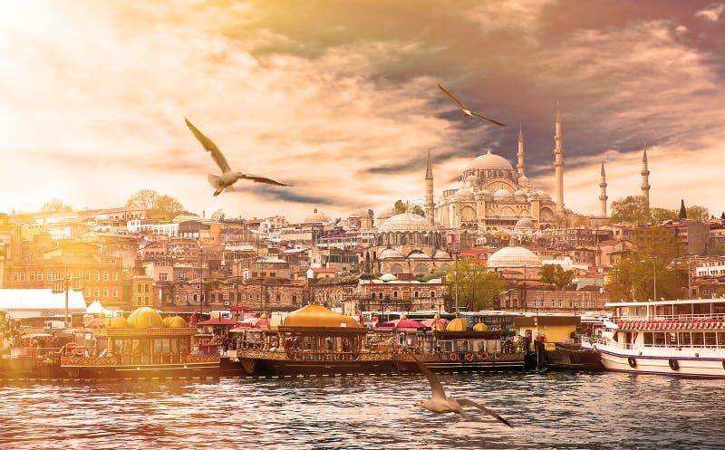 Estambul la capital de Turquía fotografía de archivo libre de regalías