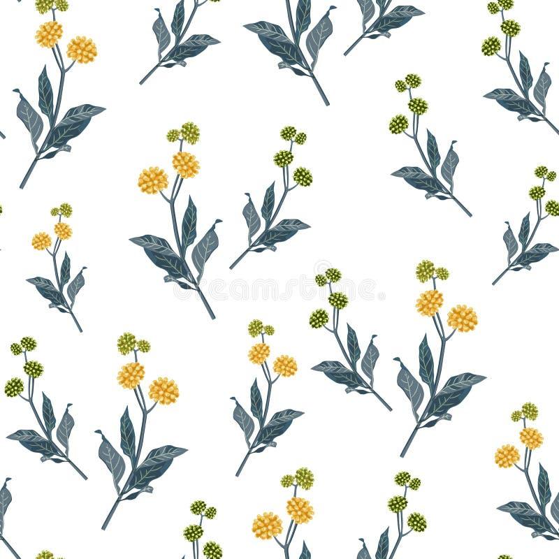 Estampado de flores elegante inconsútil en muchas variedades de wildflowers Los adornos botánicos se dispersan aleatoriamente libre illustration