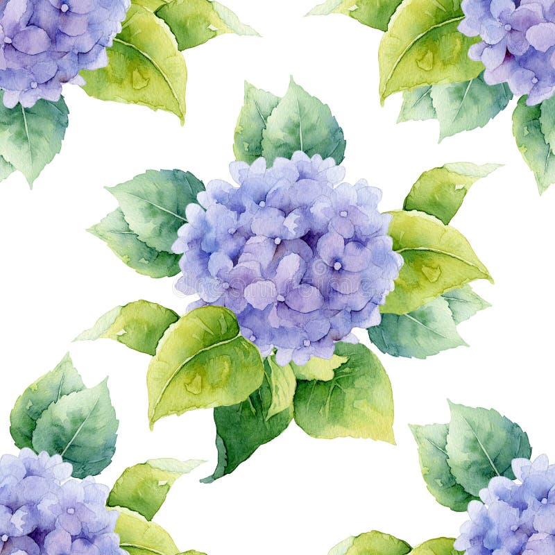 Estampado de flores inconsútil con las hortensias ilustración del vector
