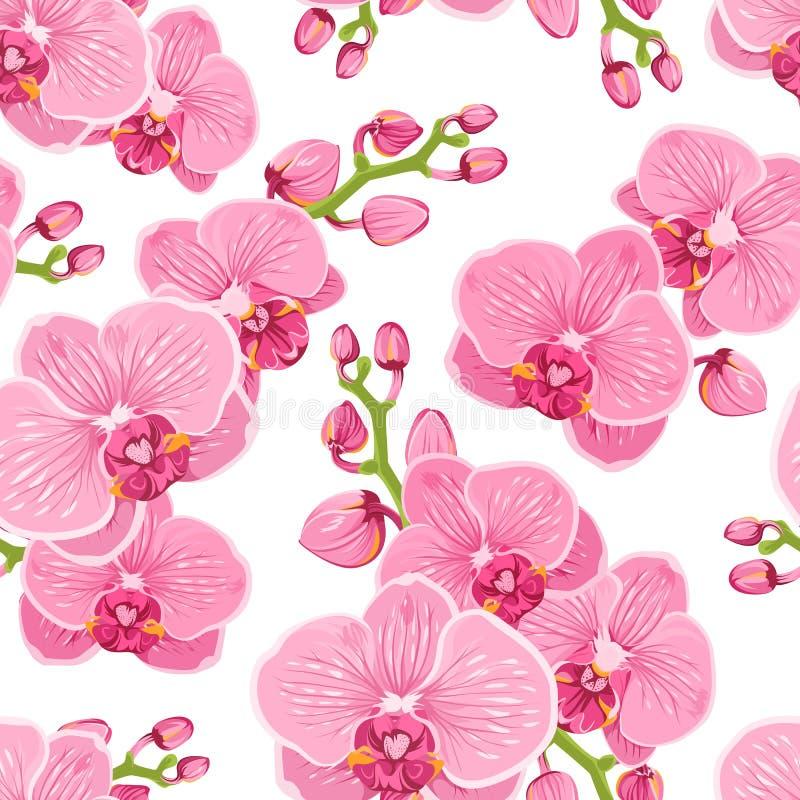 Estampado de flores inconsútil con las flores púrpuras rosadas brillantes del phalaenopsis de la orquídea en el fondo blanco libre illustration