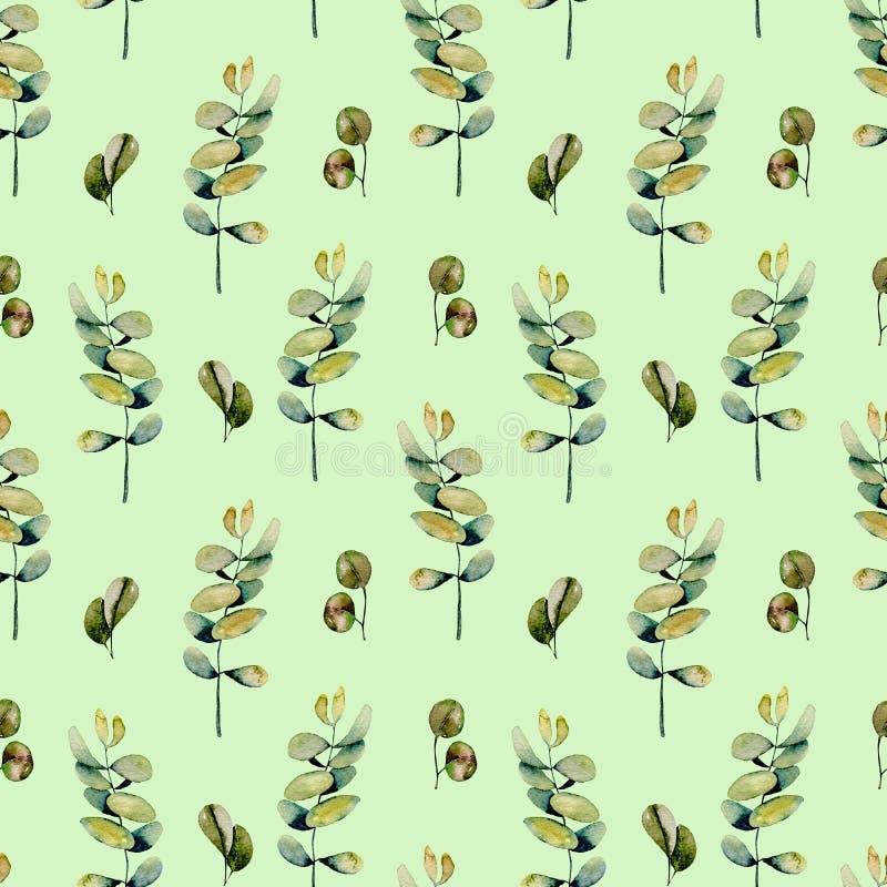 Estampado de flores inconsútil con las ramas del eucalipto de la acuarela libre illustration