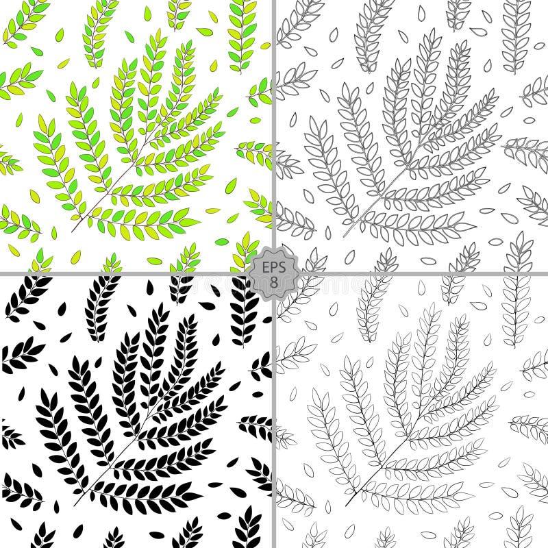 Estampado De Flores Inconsútil Del Contorno Del Vector Textura ...