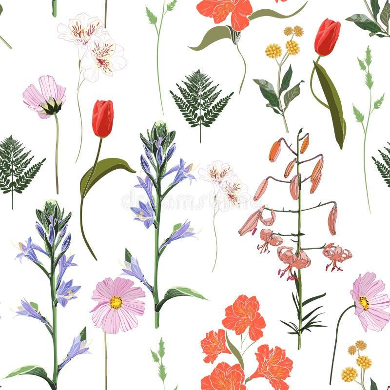Estampado de flores inconsútil en un fondo blanco Flores e hierba de la primavera stock de ilustración