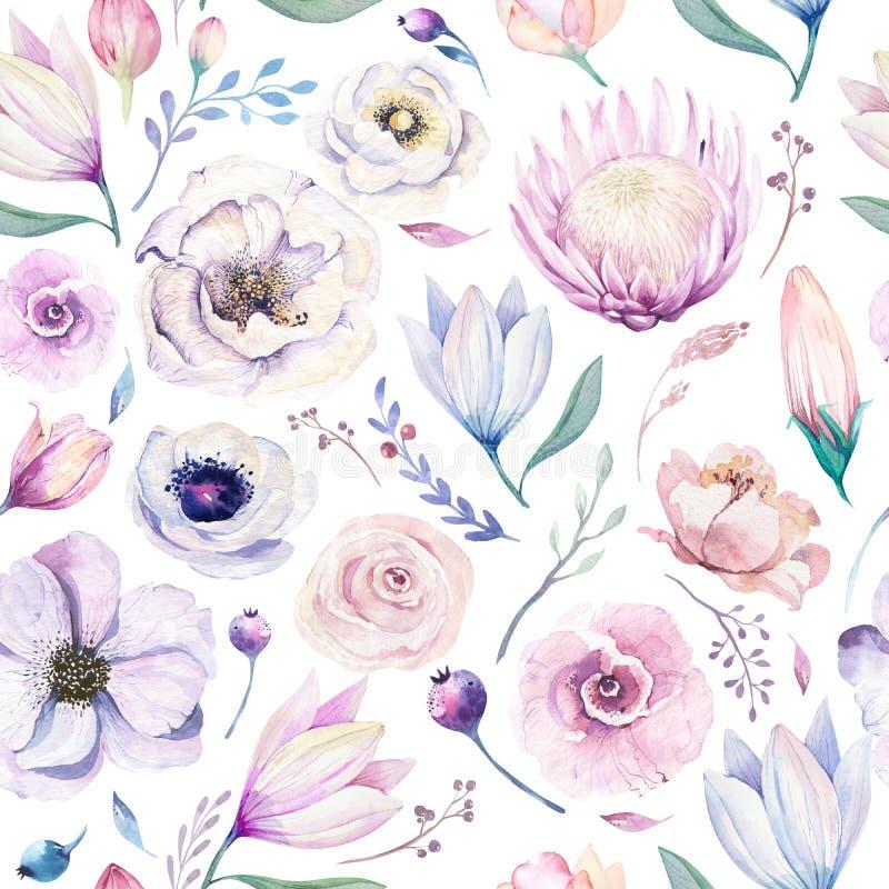 Estampado de flores lilic de la acuarela de la primavera inconsútil en un fondo blanco Flores rosadas y color de rosa, decoración ilustración del vector