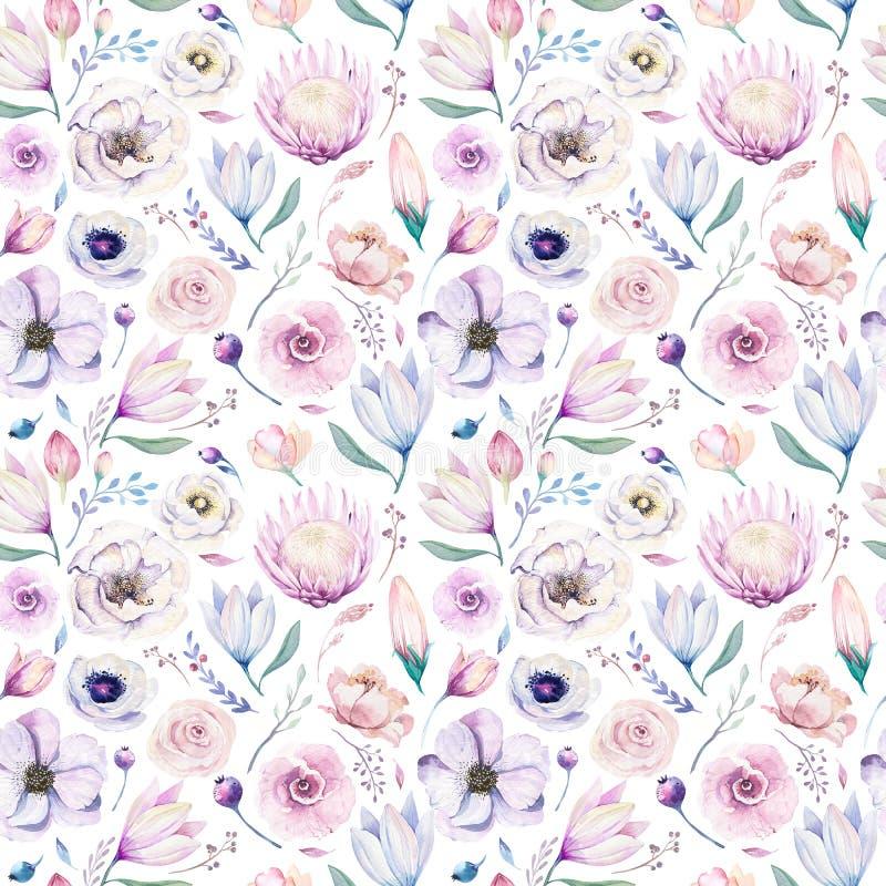 Estampado de flores lilic de la acuarela de la primavera inconsútil en un fondo blanco Flores rosadas y color de rosa, decoración fotos de archivo