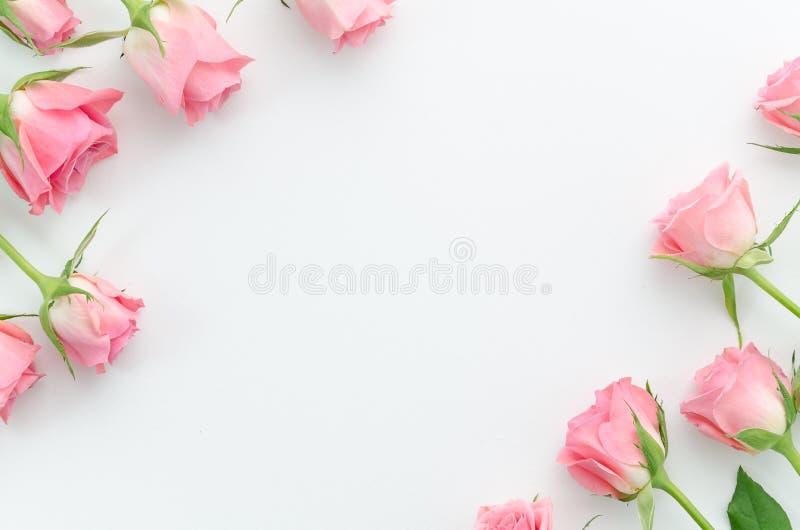 Estampado de flores, marco hecho de rosas rosadas hermosas en el fondo blanco Endecha plana, visión superior Fondo del `s de la t foto de archivo libre de regalías