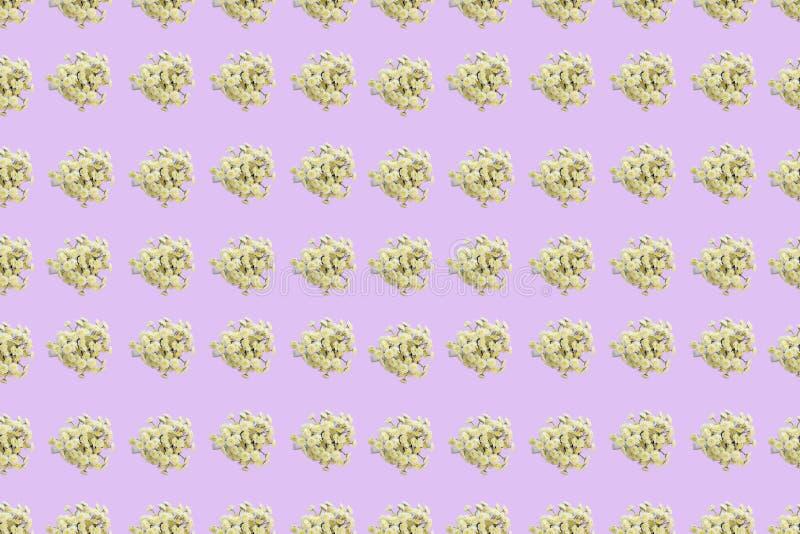 Estampado de flores de una serie de crisantemos en una endecha plana rosada de la opinión superior del fondo stock de ilustración