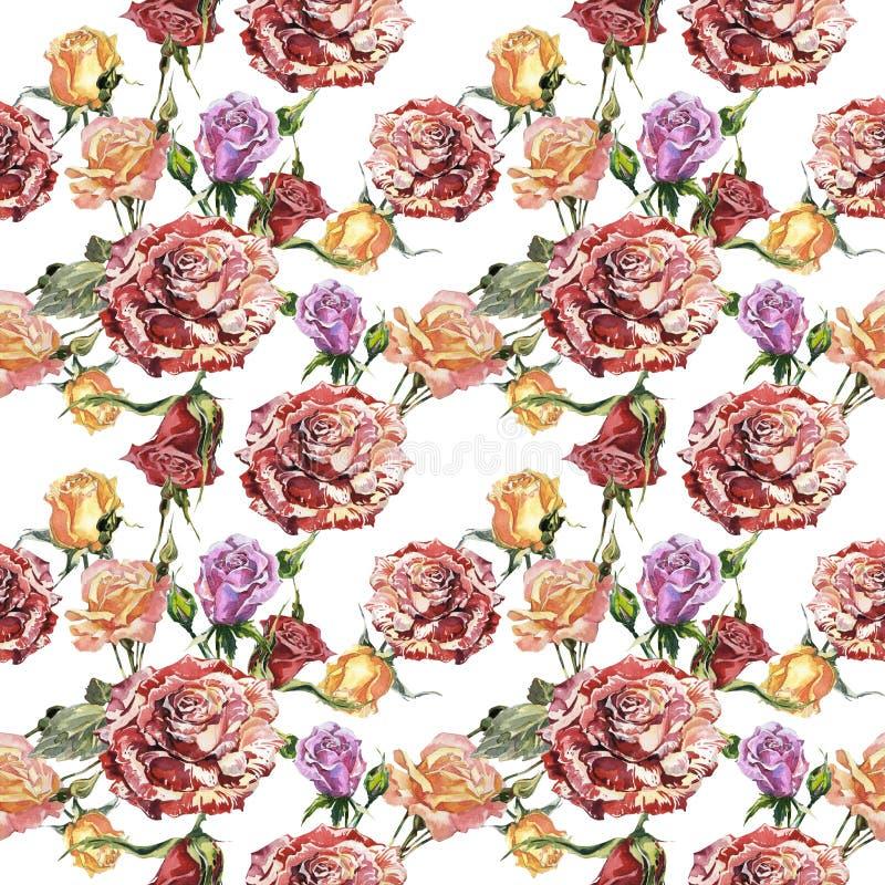 Estampado de plores color de rosa del Wildflower en un estilo de la acuarela aislado stock de ilustración