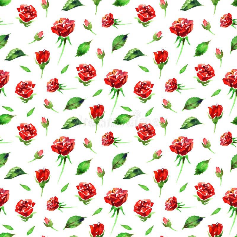 Estampado de plores color de rosa del Wildflower en un estilo de la acuarela aislado Nombre completo de la planta: rosa del rojo, ilustración del vector