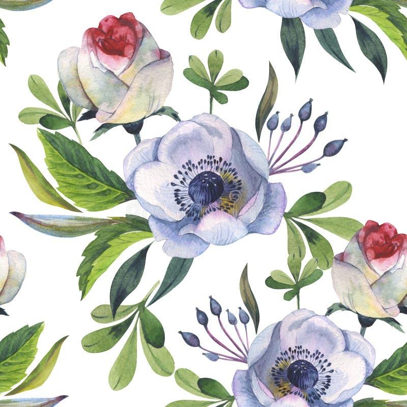 Estampado de plores de la anémona del Wildflower en un estilo de la acuarela aislado ilustración del vector