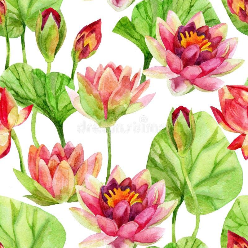 Estampado de plores de Lotus watercolor stock de ilustración