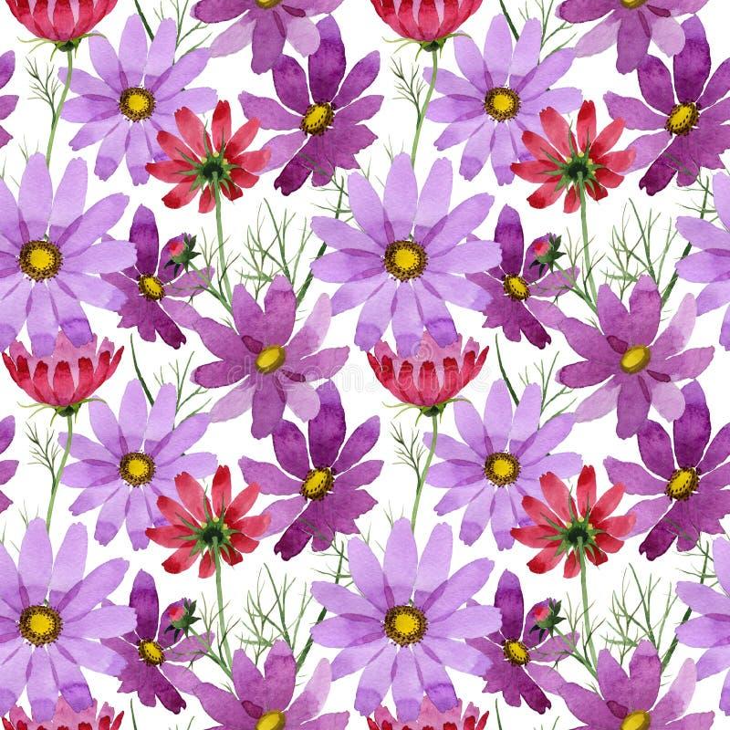 Download Estampado De Plores Del Kosmeya Del Wildflower En Un Estilo De La Acuarela Stock de ilustración - Ilustración de travieso, aguafuerte: 100526602